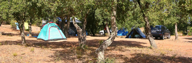 Camping les janets bormes les mimosas dans le var for Camping bormes les mimosas piscine